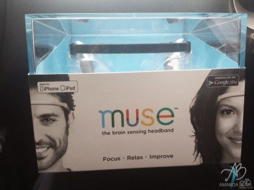 muse headband box