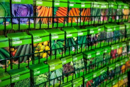 hydroponics at home mg 6869 sm